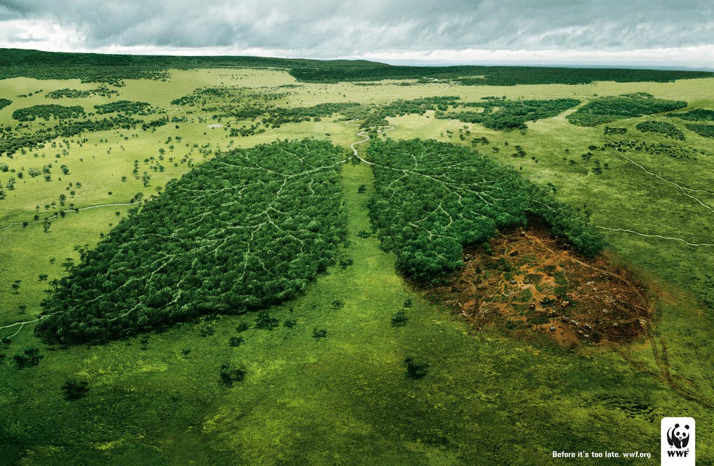 Campaña publicitaria econlogia